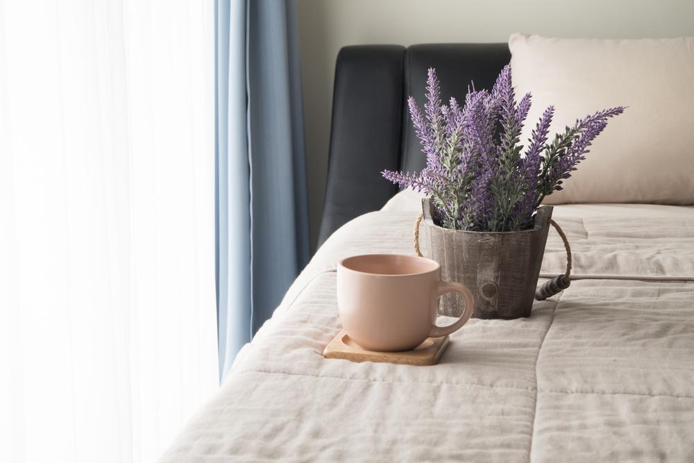 Stark Riechende Pflanzen: Duftendes, Wie Lavendel, Jasmin Oder Lilien Kann  Die Schlafqualität Erheblich Stören. Ihr Starker Geruch Kann Zudem Zu ...