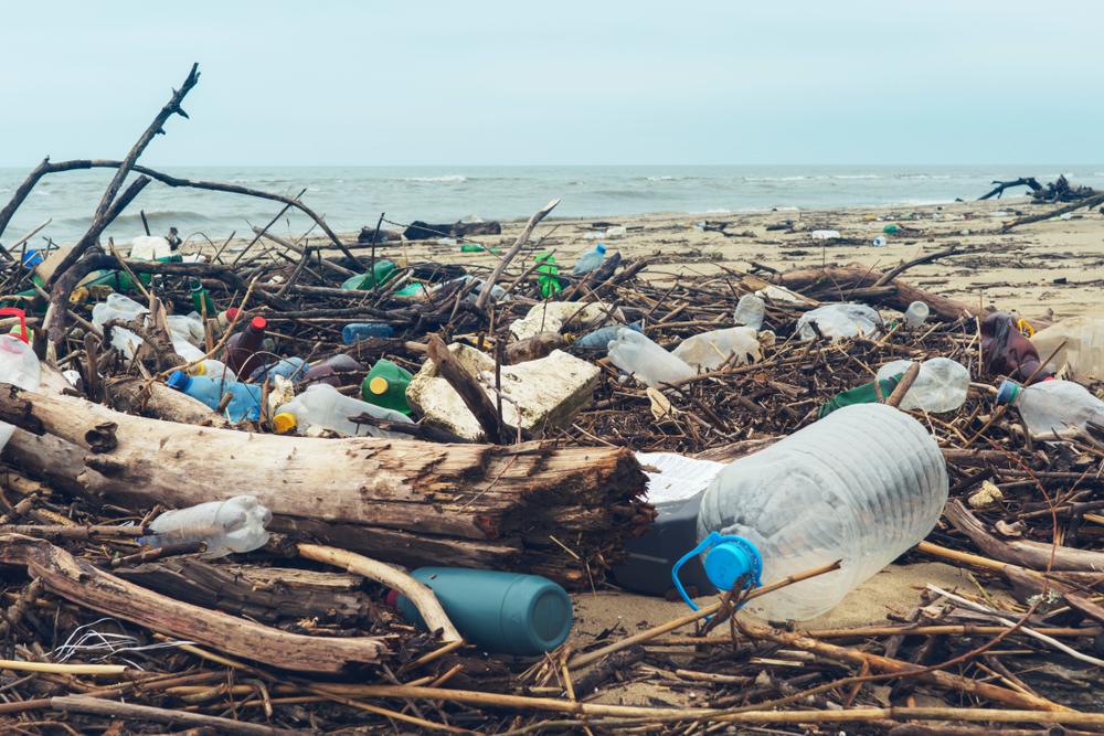 Malaysische Prinzessin sammelt Plastikmüll zum Geburtstag