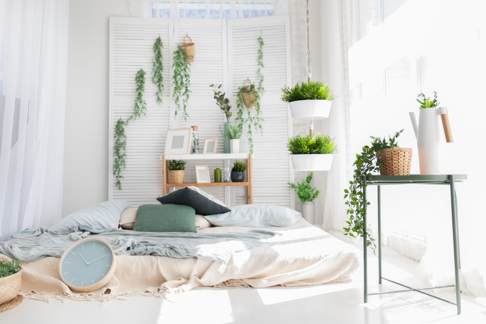 5 pflanzen die deine schlafqualit t verbessern werden. Black Bedroom Furniture Sets. Home Design Ideas