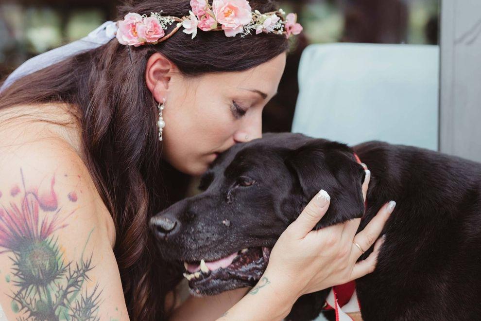 Hund überlebt bis zur Hochzeit und überrascht alle