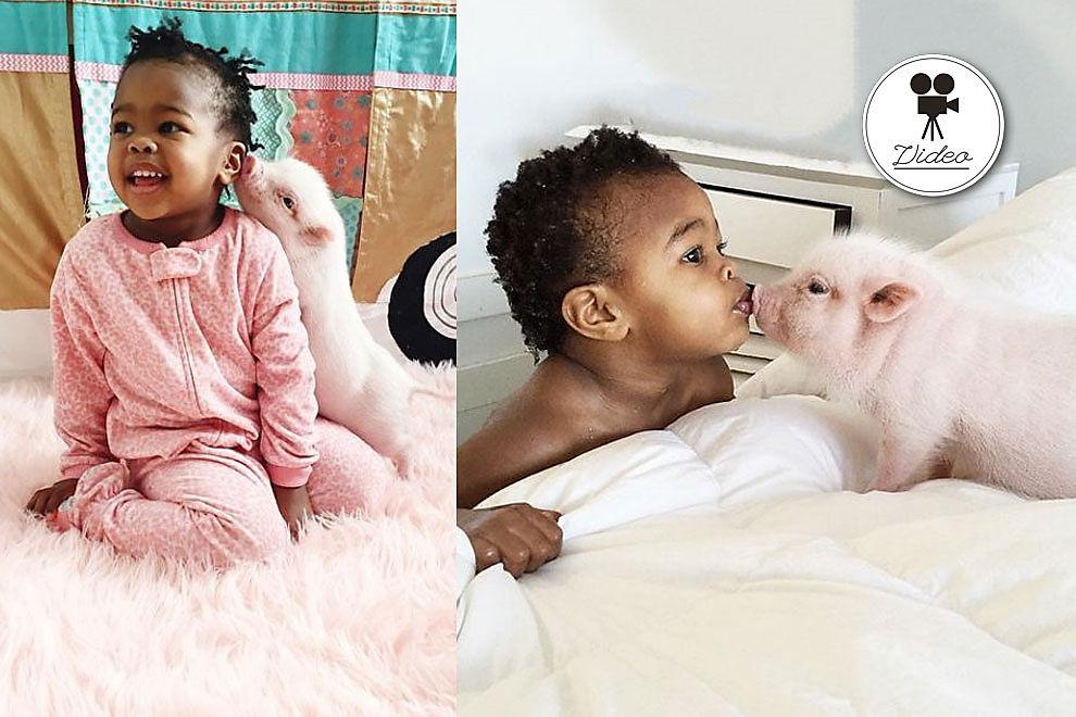 Kleines Mädchen und ihr noch kleineres Schweinchen