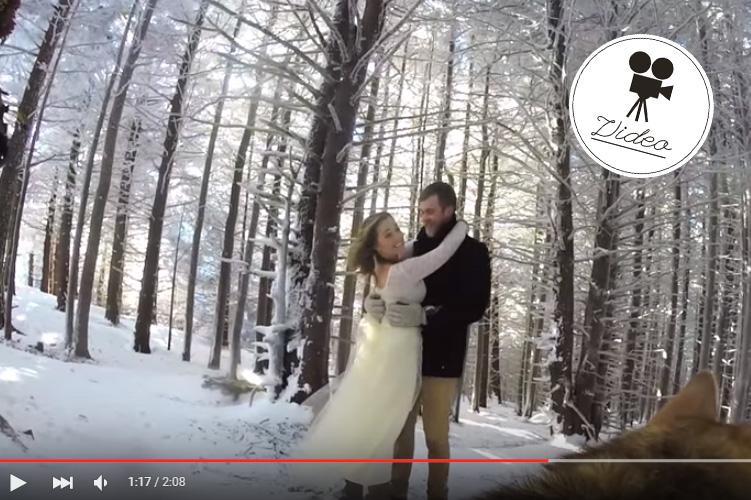 Paar lässt Hochzeit von Hund filmen