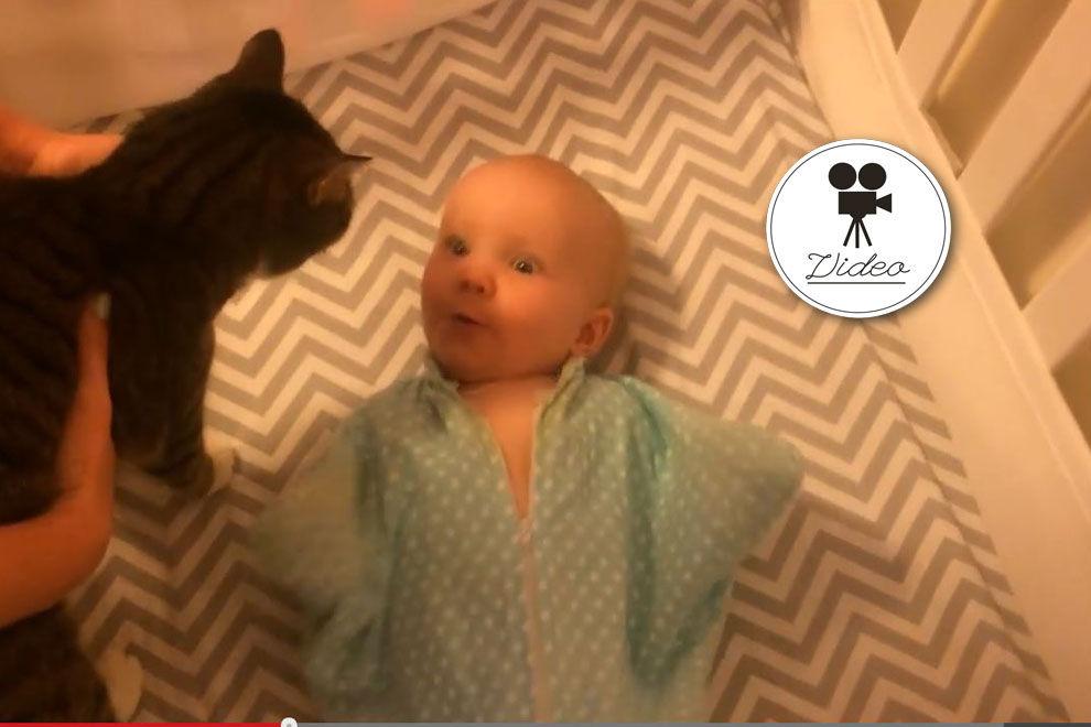 Mädchen zuckt bei Anblick der Katze aus