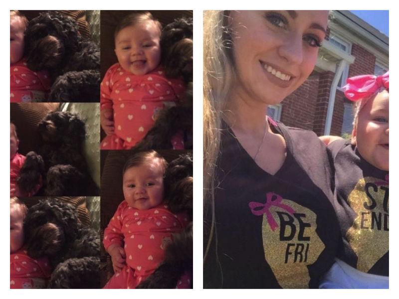 Dieser Hund rettete Baby das Leben