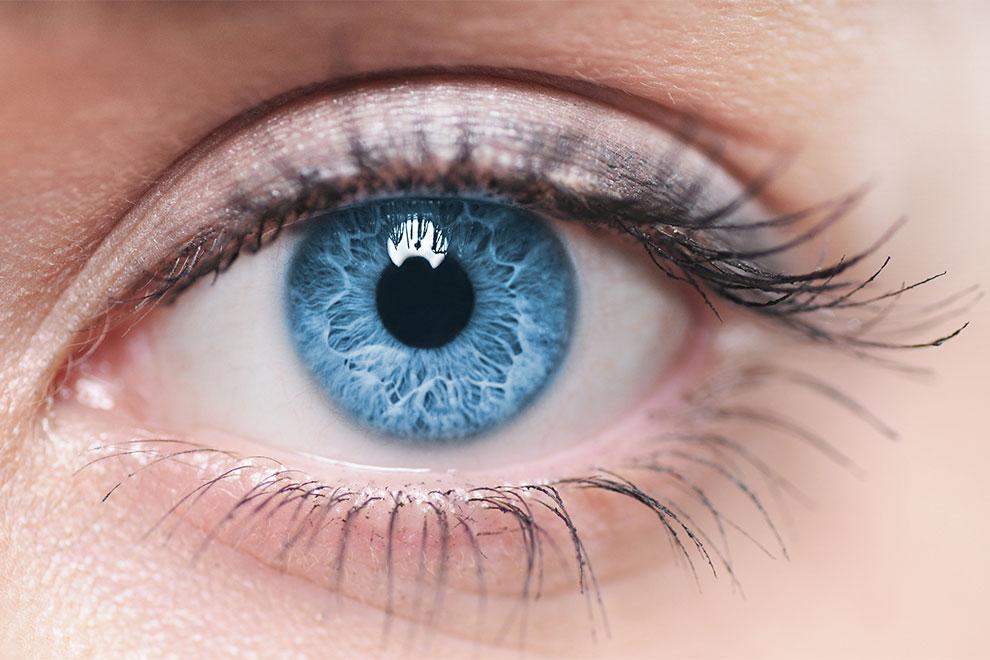 Menschen mit blauen Augen haben diese Gemeinsamkeit