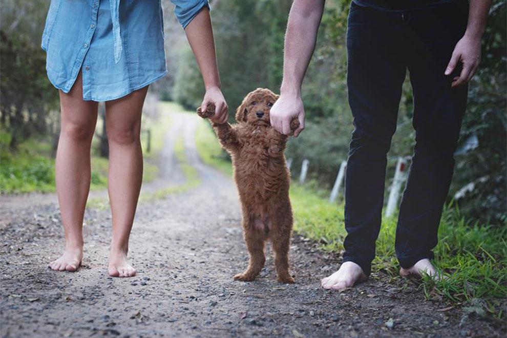 Dieses junge Paar hat die perfekte Antwort auf die Frage nach Nachwuchs