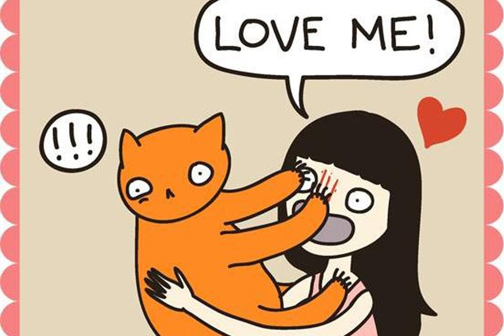 Diese Comics verstehen nur Katzenliebhaber