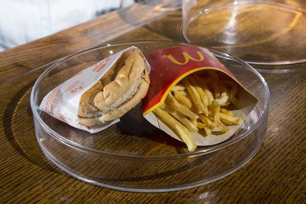 Sechs Jahre altes McDonald's-Menü noch immer schimmelfrei
