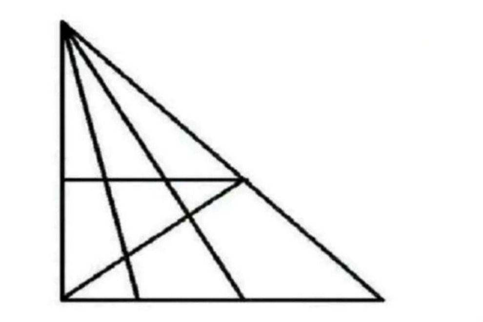 Dieses Rätsel spaltet das Netz