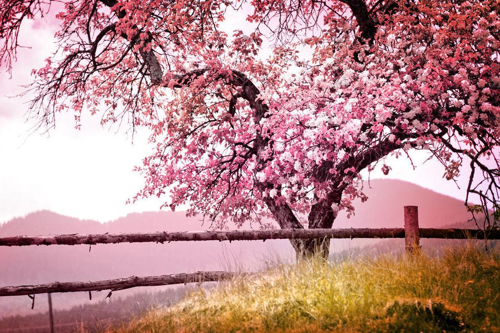 7 doofe Dinge, die der Frühling mit sich bringt
