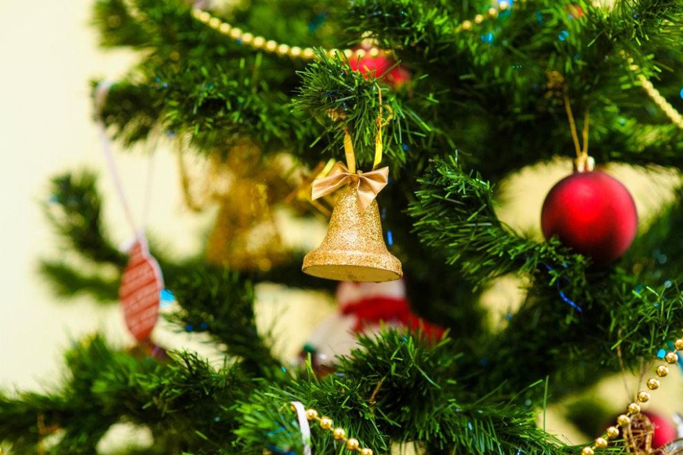 Tipps und Fakten rund um den Weihnachtsbaum