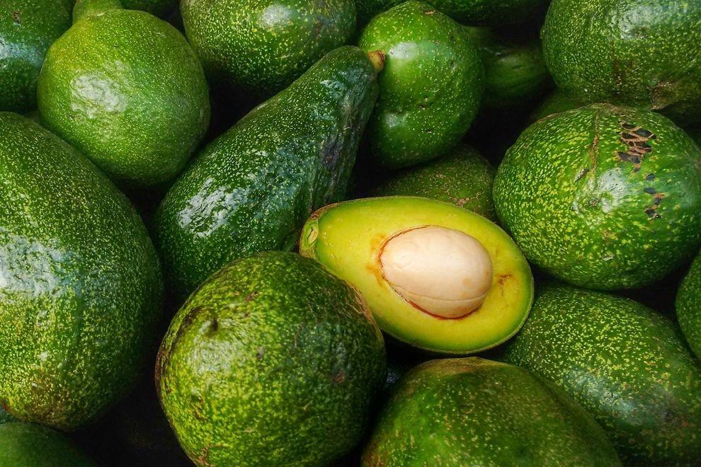 Wie der Avocado-Boom unsere Umwelt zerstört