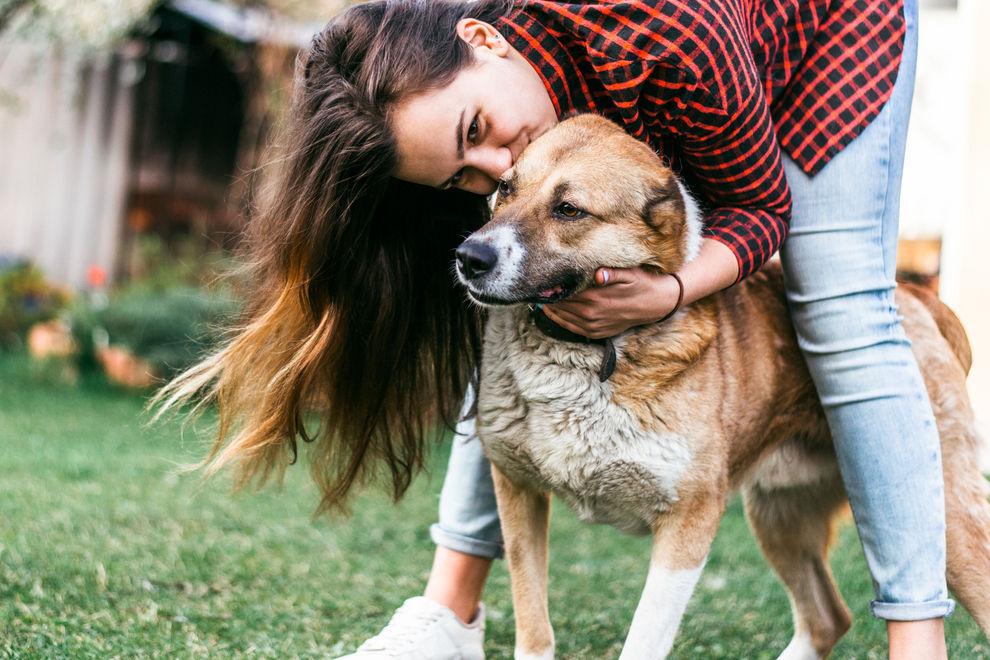 Dieses Unternehmen gibt frischen Hundeeltern  eine Woche bezahlten Urlaub