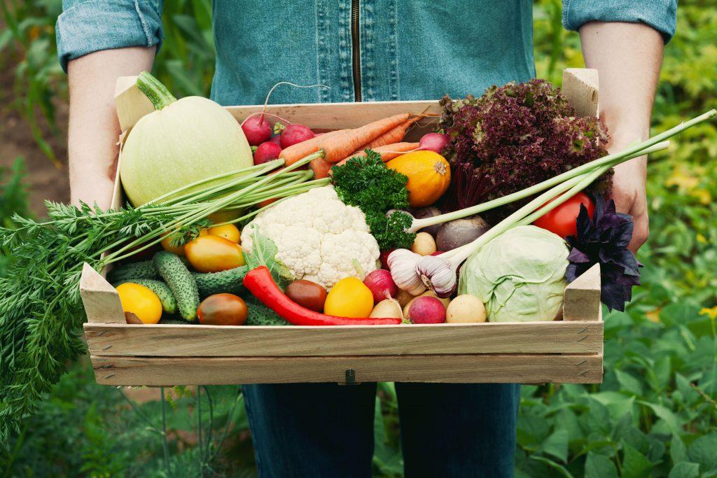 Hast du eigentlich eine Ahnung, wie diese Gemüse-Sorten wirklich wachsen?