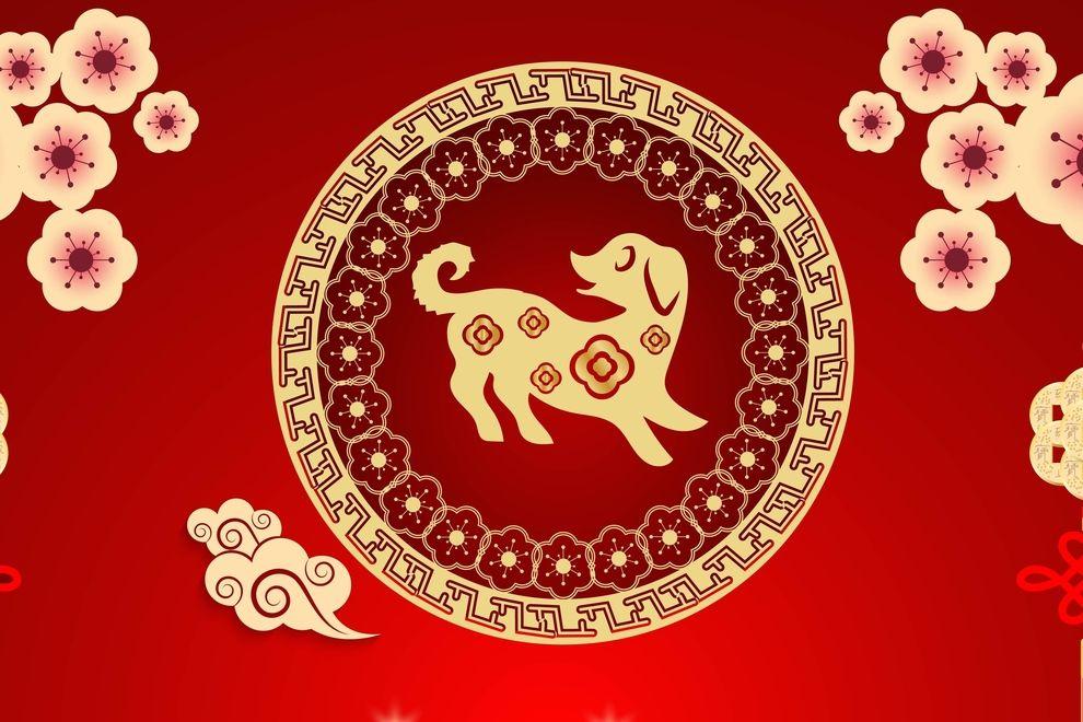 Chinesisches Neujahr: So wirkt sich das Jahr des Hundes auf dein Leben aus
