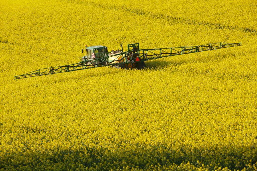 Gentechnik in der Landwirtschaft hat zwar einen sehr schlechten Ruf. Ein unumstößlicher Beweis für den Allergie-Zusammenhang steht jedoch noch aus.