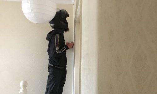 22-Jährige bestellt Essen, damit Lieferant Spinne aus dem Haus entfernt