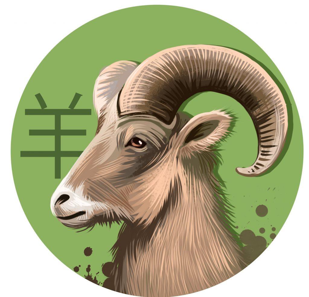 Was dein chinesisches Tierkreiszeichen über dich aussagt