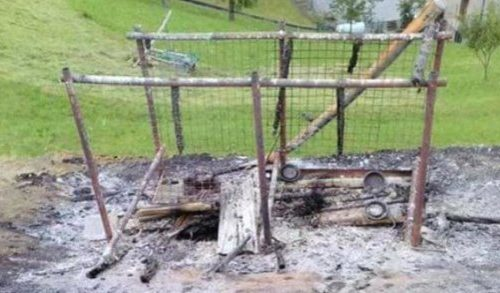 Unbekannte verbrennen Hunde bei lebendigem Leib
