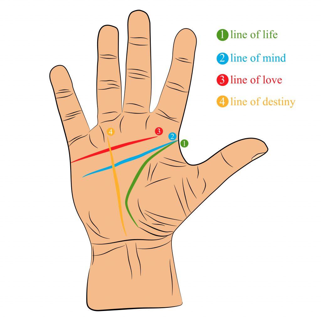 Handlesen: Die 4 wichtigsten Linien und was sie bedeuten
