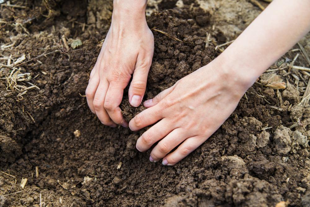 Frau findet bei Haustier-Begräbnis im Garten toten Menschen