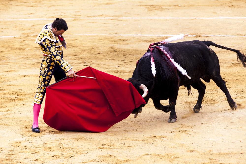 Das Töten der Stiere bei Stierkämpfen auf Mallorca wieder erlaubt