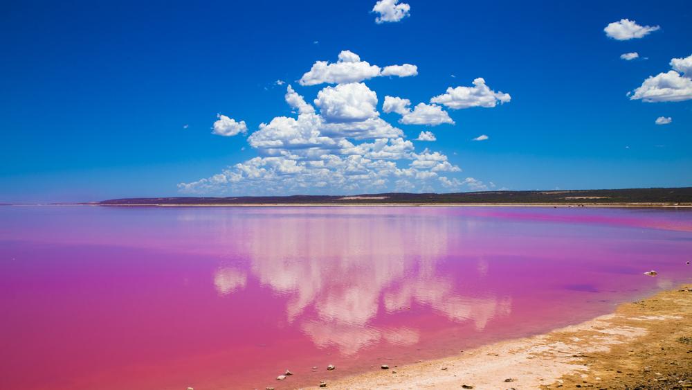 See in Melbourne hat sich knallpink eingefärbt