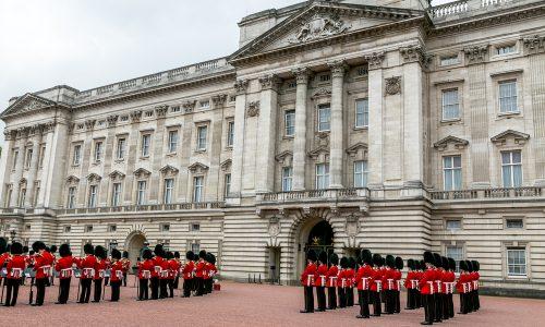 Rattenplage im Buckingham Palace: Queen kämpft mit Nagern