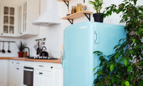 Beauty Fridge: Deshalb wollen alle diesen Kühlschrank