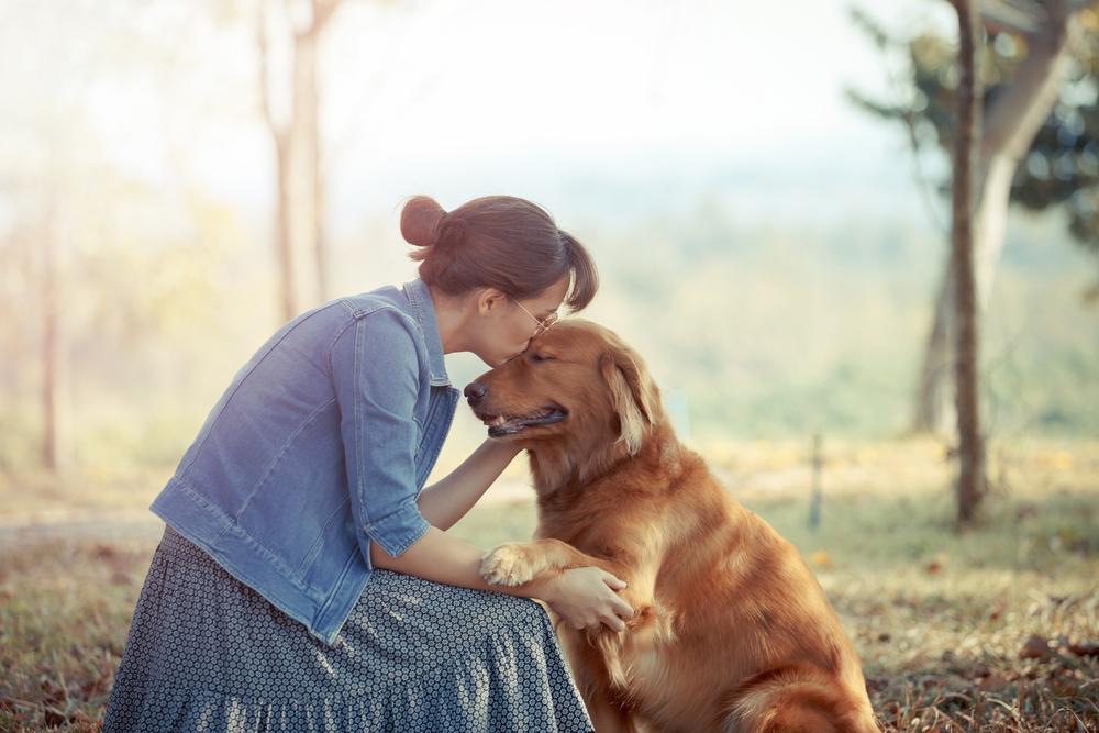 Ungewöhnliche Hochzeit: Frau heiratet ihren Hund live im TV