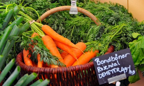 Demeter: Was bedeutet bio-dynamische Landwirtschaft?