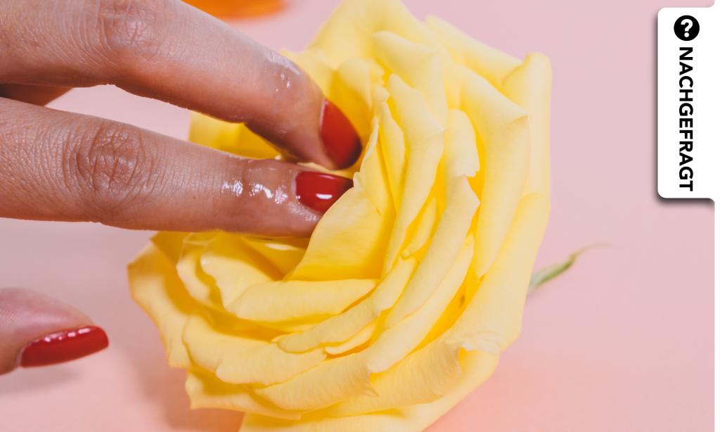 Was bedeutet eigentlich Sex Positivity?