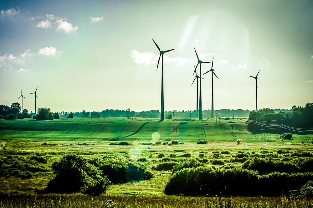 Studie: Europas Windräder könnten die ganze Welt mit Energie versorgen