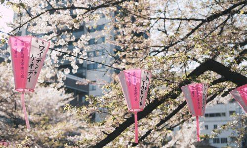 Tokio Mania: 5 Gründe, warum du jetzt nach Tokio reisen solltest