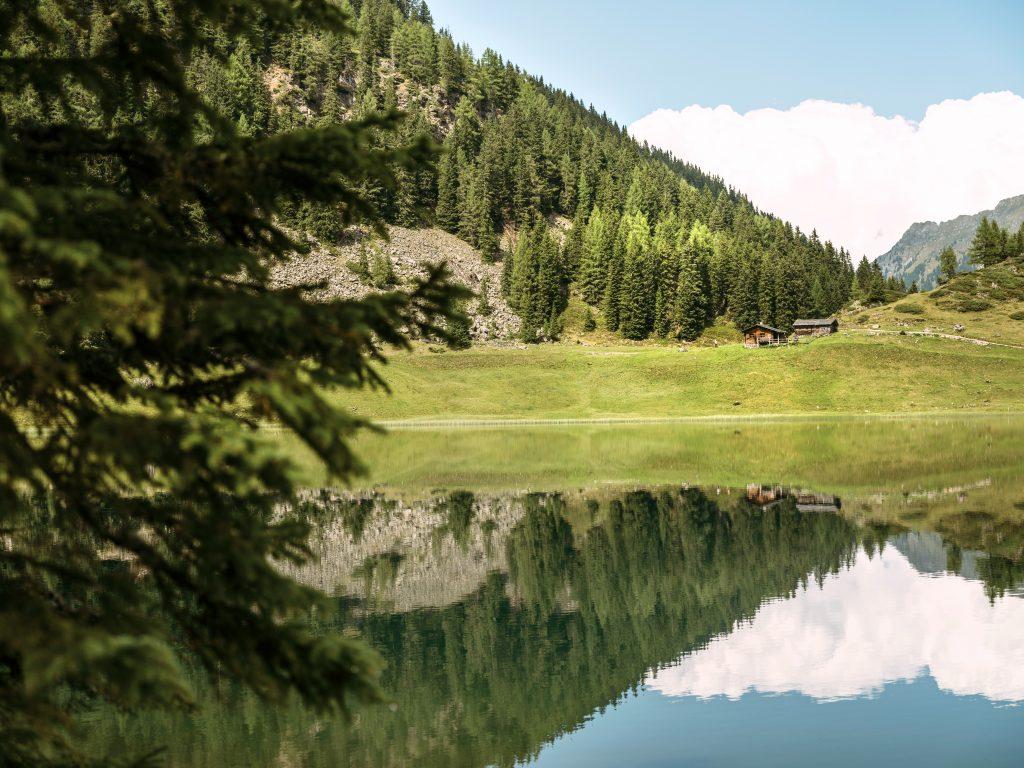 5 Dinge, die du täglich für die Umwelt tun kannst