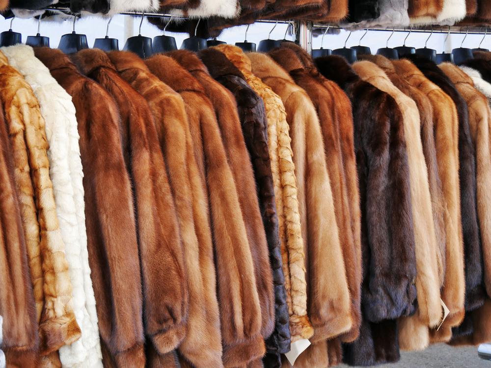 Kalifornien verbietet den Verkauf von neuem Pelz