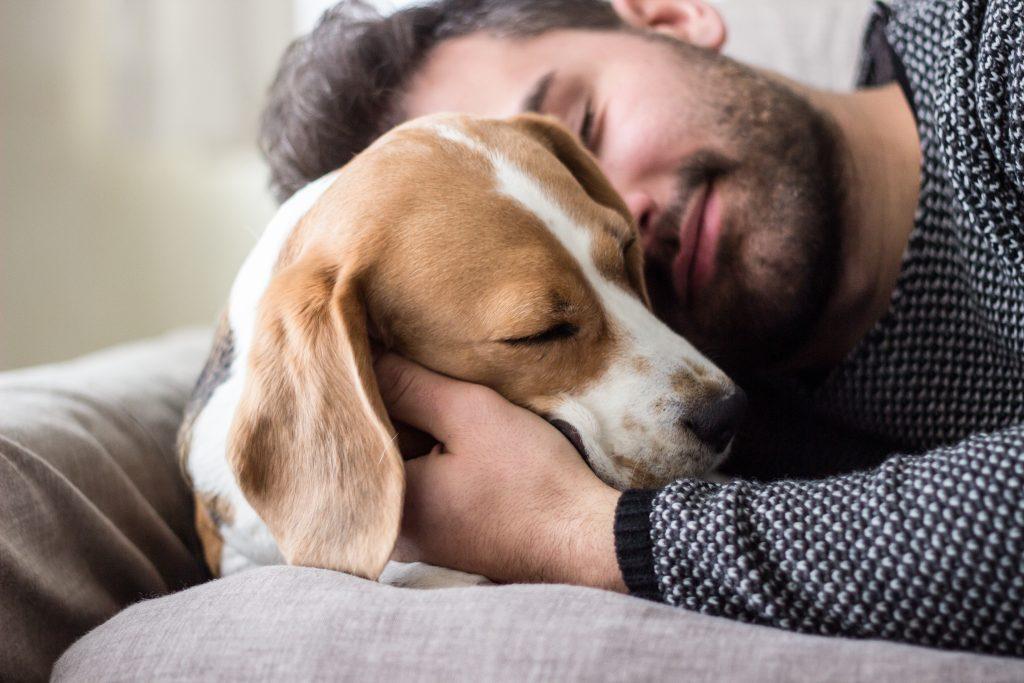 Studie: Menschen, die Hunde besitzen, leben länger