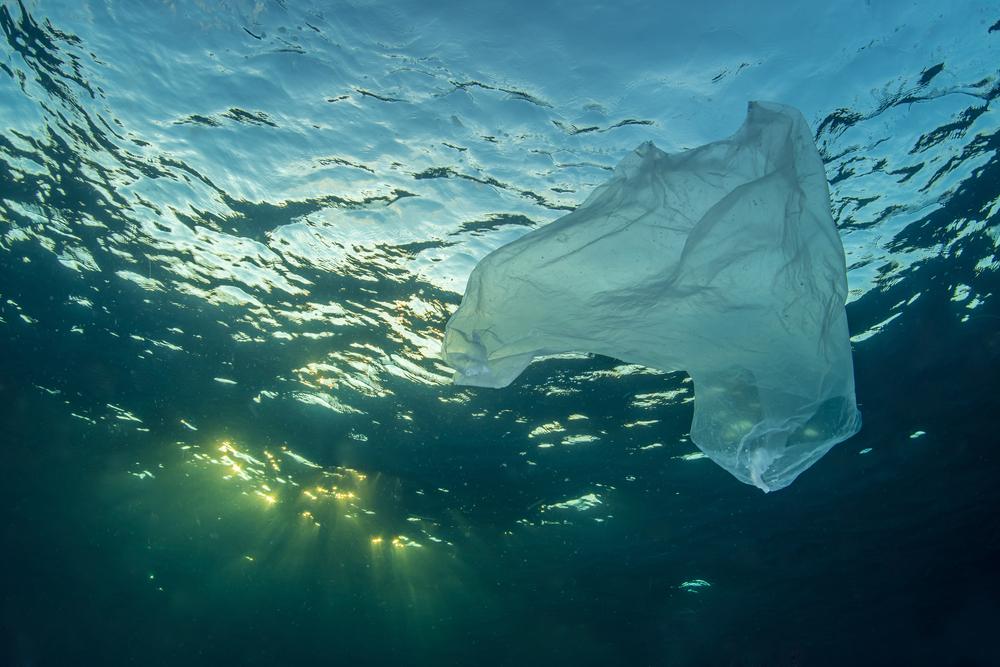 Ocean Cleanup: Projekt will jetzt auch Flüsse reinigen