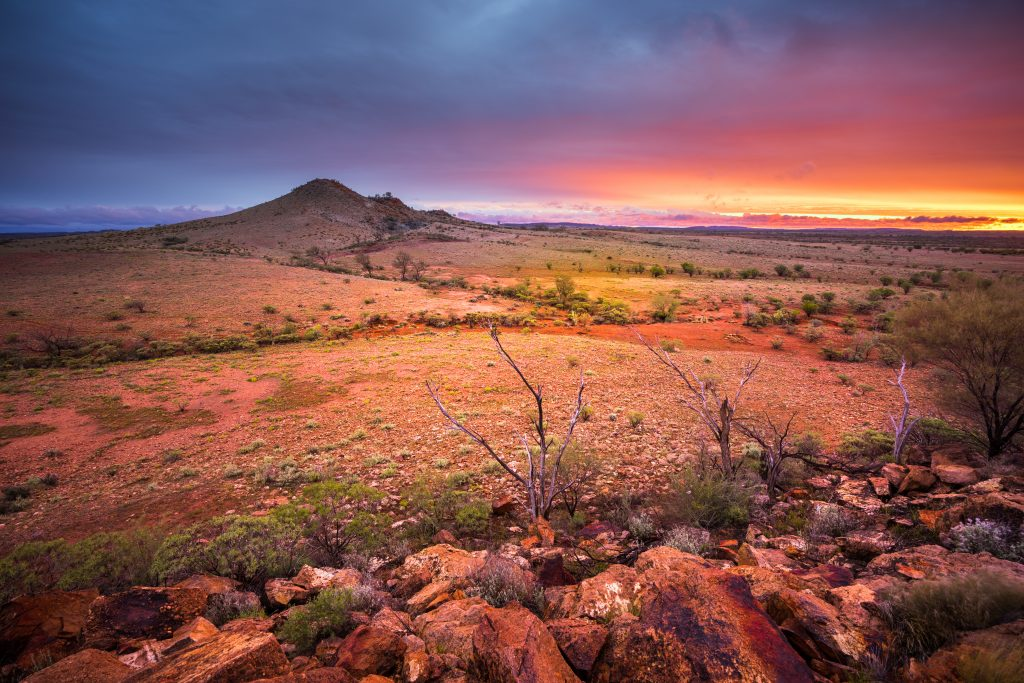 Australien: Zwei Vermisste überlebten 12 Tage im Outback