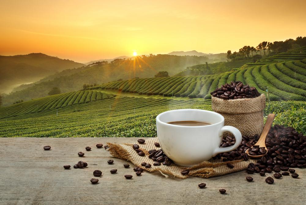 Deutschland: Politiker wollen Kaffeesteuer für faire Produkte abschaffen