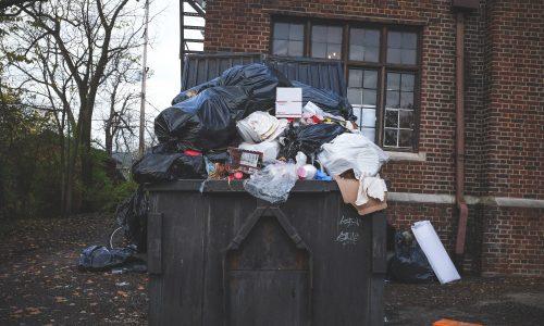 Aufgedeckt: 4 Mythen zur Mülltrennung