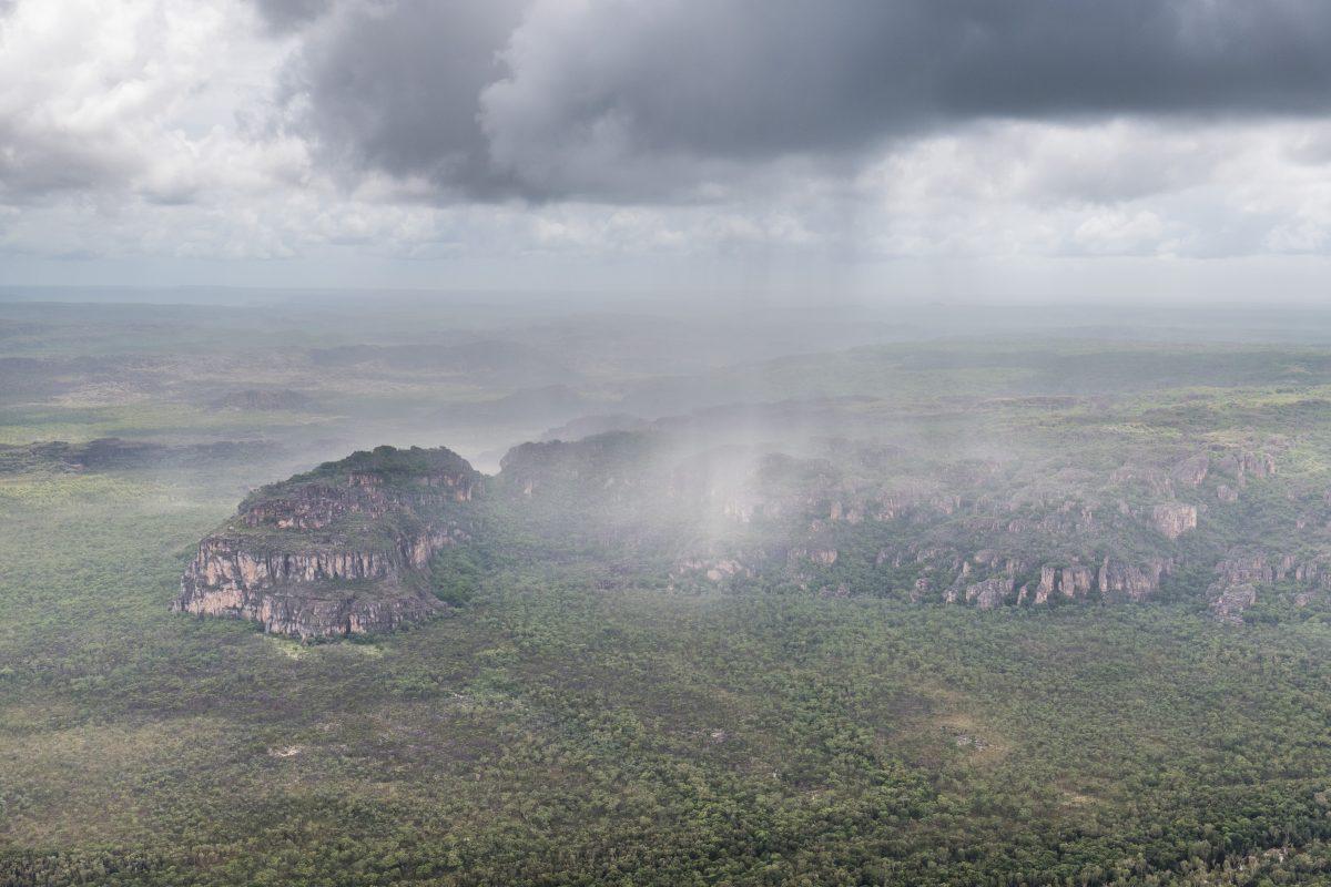 Regen in Australien: Langersehnte Hilfe im Kampf gegen Buschfeuer