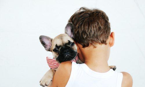 Studie: Kontakt mit Hunden in Kindheit schützt vor Schizophrenie
