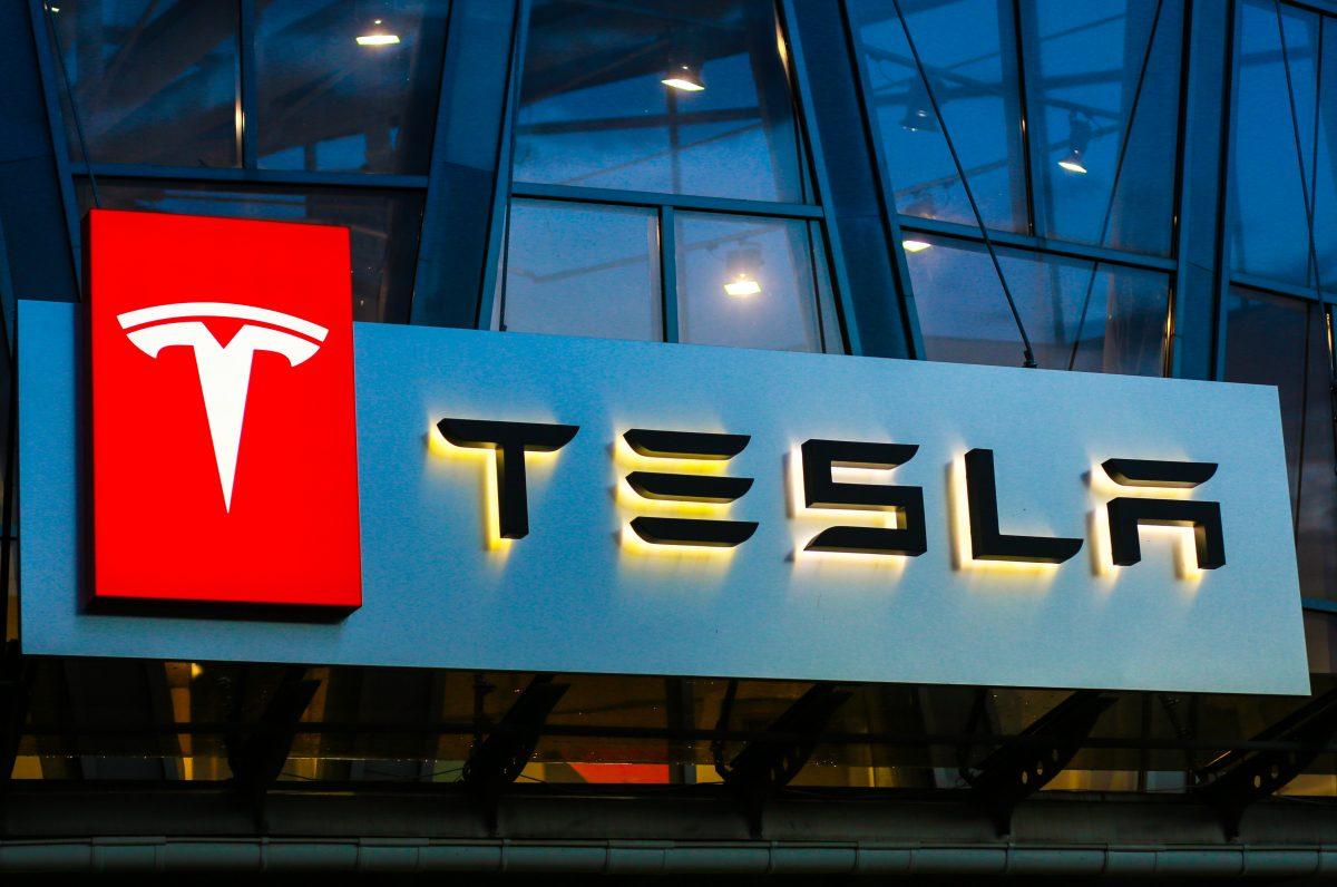 Tesla darf Waldstück für Fabrik in Deutschland roden