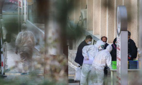 Wegen Coronavirus: China verbietet Handel und Konsum von wilden Tieren