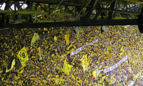 Borussia Dortmund – PSG: Livestream & live TV-Übertragung