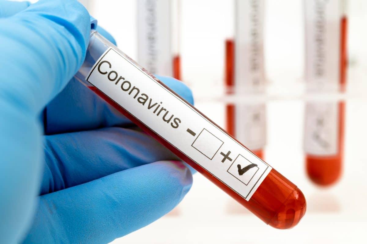 Coronavirus: Österreichische Regierung informiert über aktuelle Entwicklungen