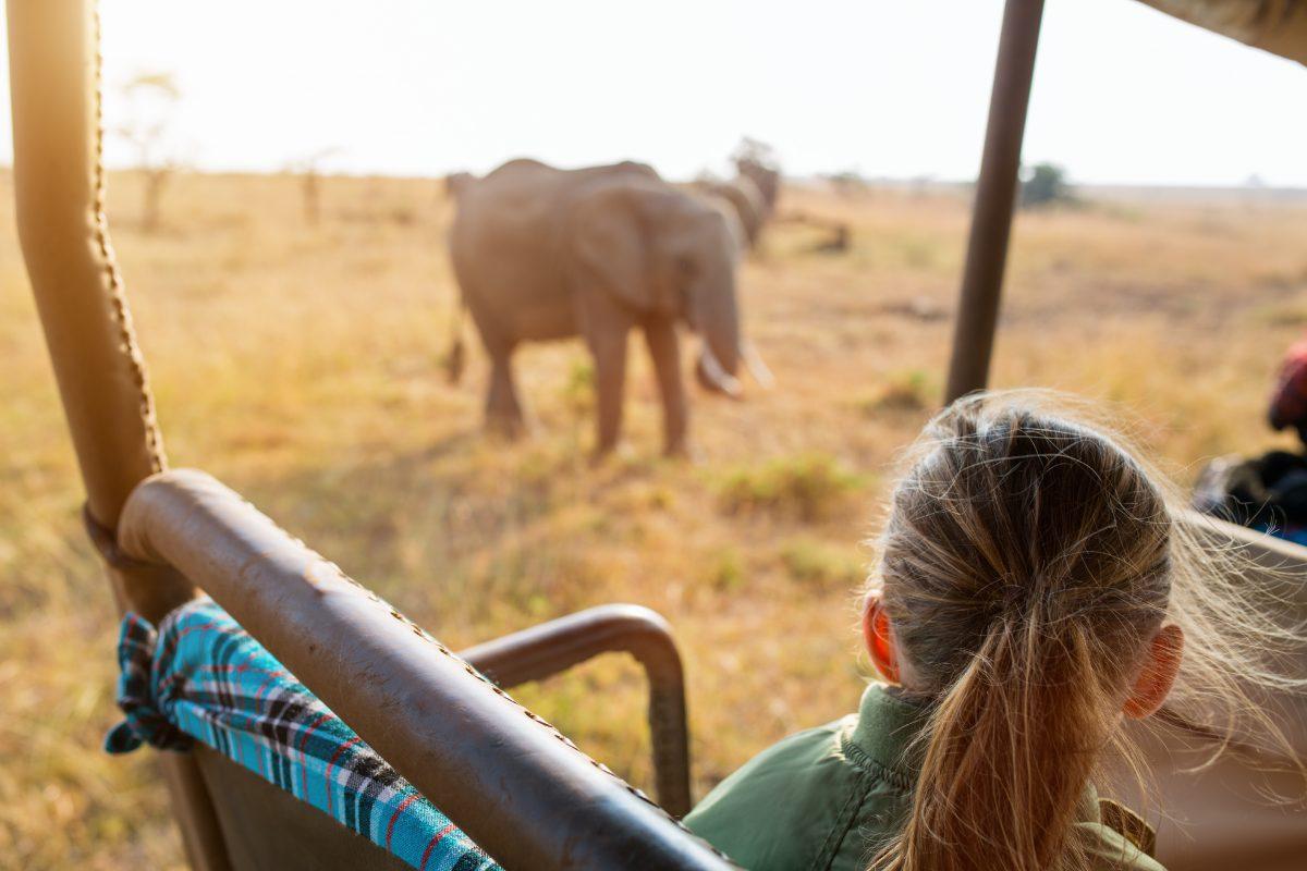 Vierjährige dürfen bei Jagdtouren in Afrika auf wilde Tiere schießen