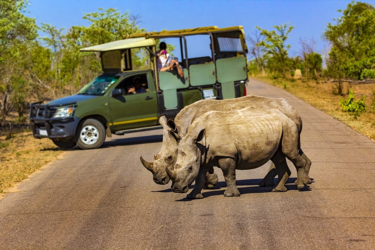Südafrika: Tourist droht Mordanklage wegen Reise trotz Corona-Erkrankung
