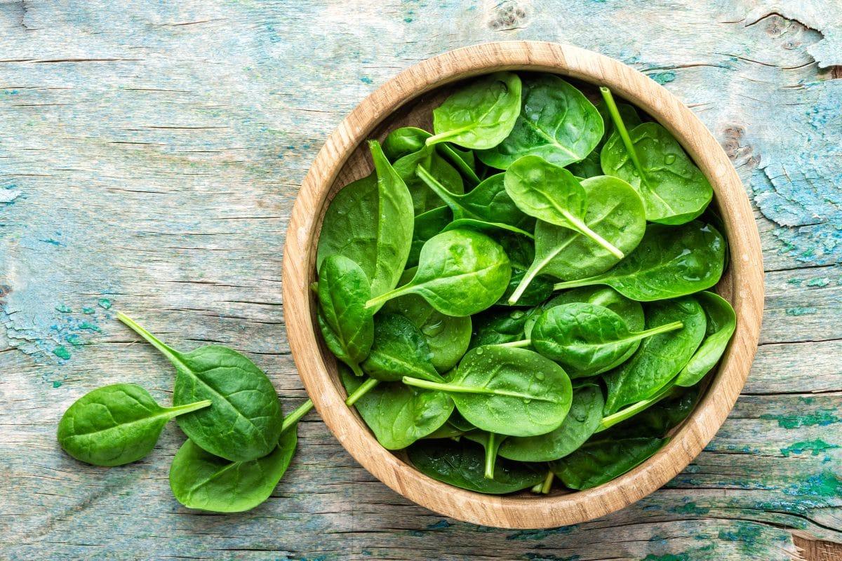 Das sind die besten Spinat-Rezepte